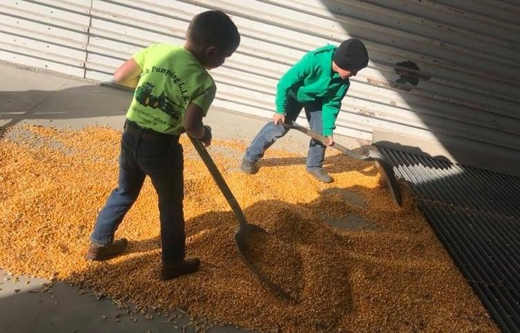 Farm Kids Working